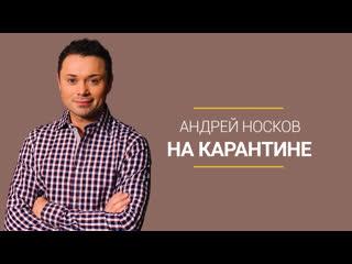 На карантине. Андрей Носков. ФАН-ТВ