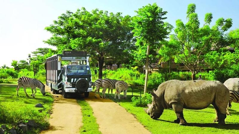 Vinpearl Safari Phú Quốc Du Lịch Khám Phá Vườn Thú Nơi bảo tồn sự sống hoang dã lớn nhất Việt Nam