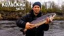 КОЛЬСКИЙ ПОЛУОСТРОВ (ч.1) | Рыбалка на семгу | Уха по-фински | Solar 450 Tohatsu 50