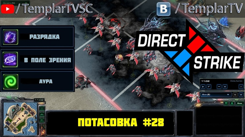 Direct Strike Мутация №28 | Каракс стетман свонн