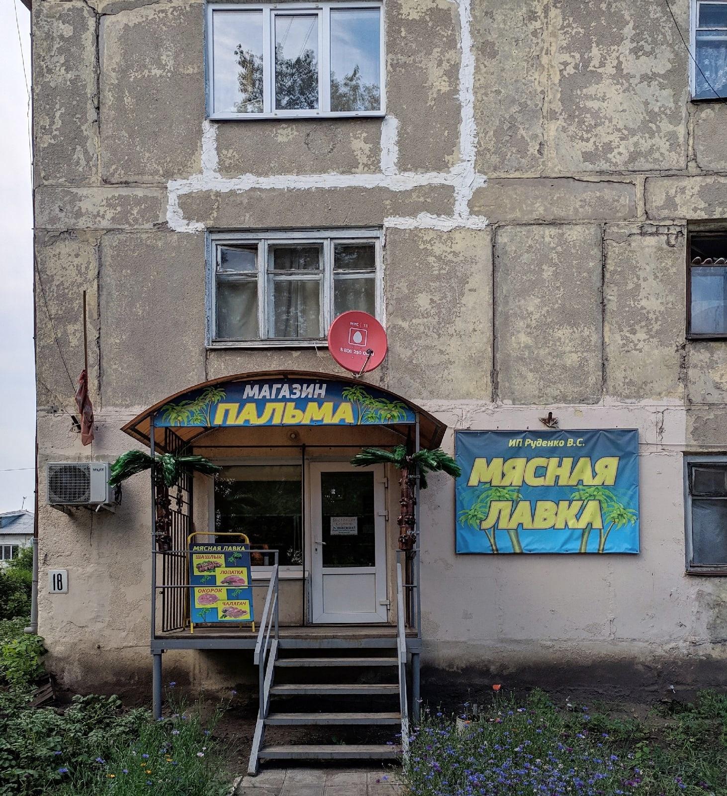 Пальмовое мясо (Омская область) - Фото