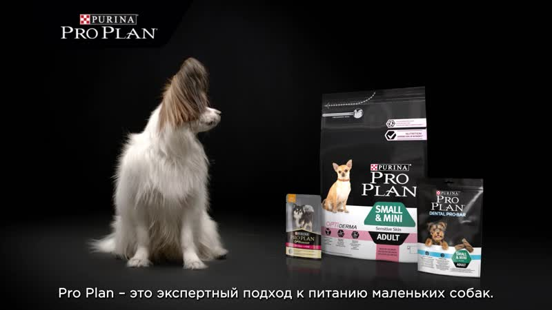 Pro Plan для маленьких собак