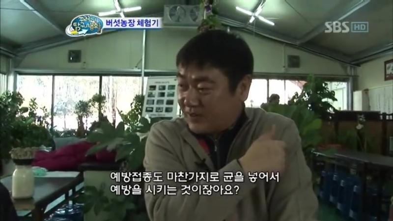 [세븐틴⁄버논] 90화 꾸러기 탐구생활 최한솔 (Vernon) - 버섯 농장 체험