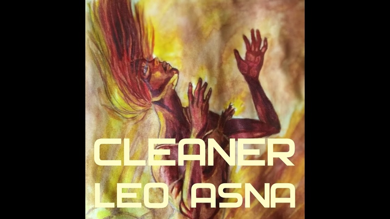 Leo Asna Cleaner