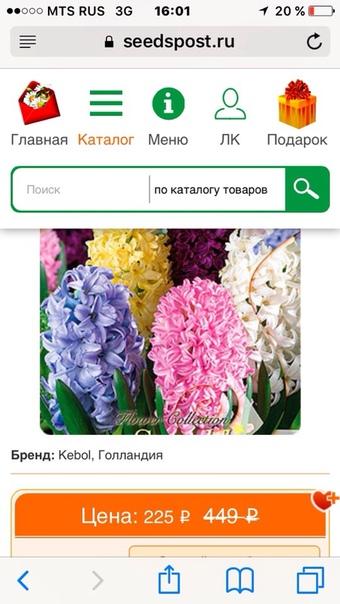 фотография из вКонтакте