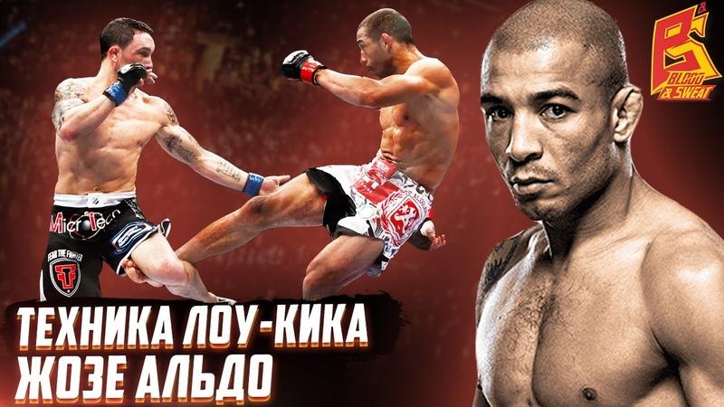 Быстрый мощный лоу кик Жозе Алдо Техника удара лоу кик бойца UFC Дмитрий Суродеев ММА
