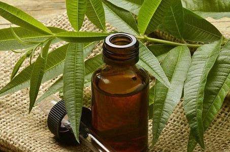 Масло чайного дерева для отбеливания зубов — одно из эффективнейших средств