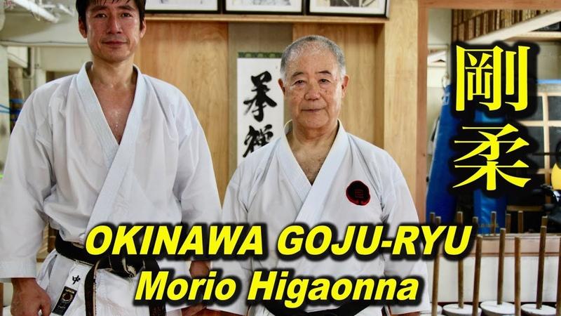 沖縄で全身武器の空手家に会った Morio Higaonna, OKINAWA GOJU-RYU KARATE