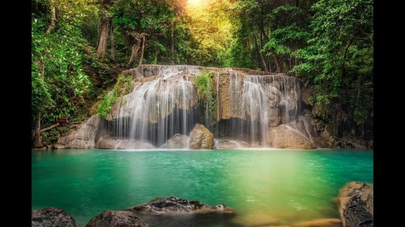 Дикие места Таиланда 1 серия Охотничьи игры