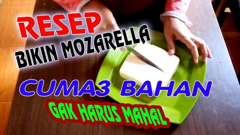 Keju mozarella kw mozarella 3 bahan resep mudah mozarella resep mozarella simpel olahan keju