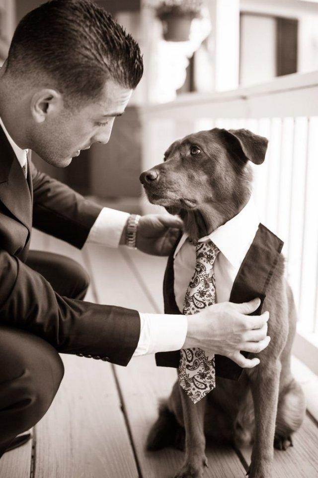 Свадьба лучшего друга.