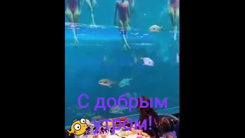 VIDEO-2020-06-02-08-27-15.mp4
