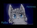 Кто ты из котов воителей по знаку зодиака