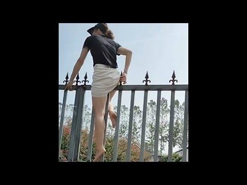 비브라토에서 가장 많이 본 동영상 컬렉션입니다 올해의 재미있는 단편 영 5