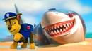 Морской патруль: Щенки спасают акулу | Супер Щенки - Щенячий патруль на русском все серии подряд
