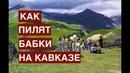 Как пилят бабки на Кавказе