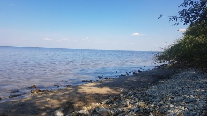 Коп на жаре в июле вдоль реки Волга хороший отдых в хорошей компании поиск с металлоискателем