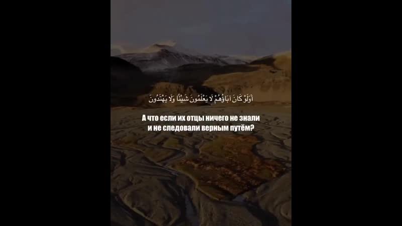 Сура 5 Аль Маида Трапеза