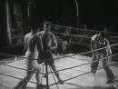 Боксёры 1941 г. (СССР).Т/к Культура (К.В. Градополов)