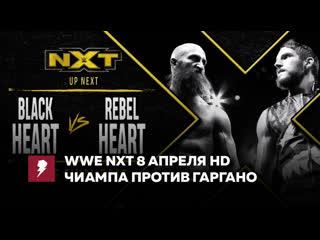#My1 НХТ за 8 апреля - Томмасо Чиампа против Джонни Гаргано