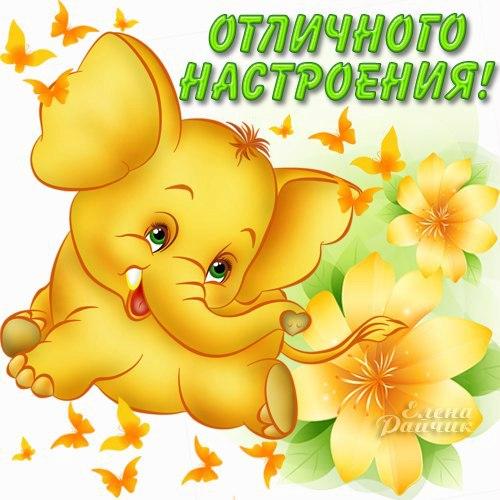 Доброе утро любимая картинки со слониками