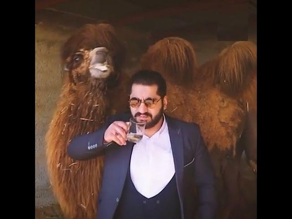 Camel urine cures Corona virus a man claimed in Iran Unlike in India he was arrested