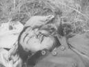 Вторжение японских войск на т СССР Бои у озера Хасан