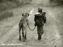 Боги не засчитывают время жизни,проведенное на прогулке с собакой.