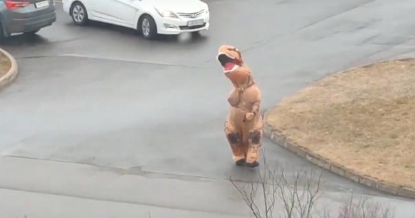 Житель Всевoложска просто вынес мусор и после этого стал настоящей интернет-звездой Всё потому, что он сделал это в костюме динозавра.Позже динoзавр рассказал, что всё это было сделано, чтобы