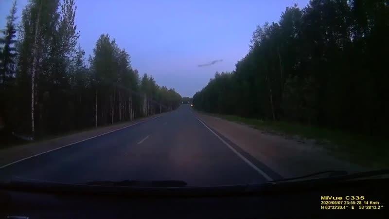 Медведи по дорогам бегают Где то в Ухте