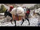 Фанские горы Таджикистан 2014