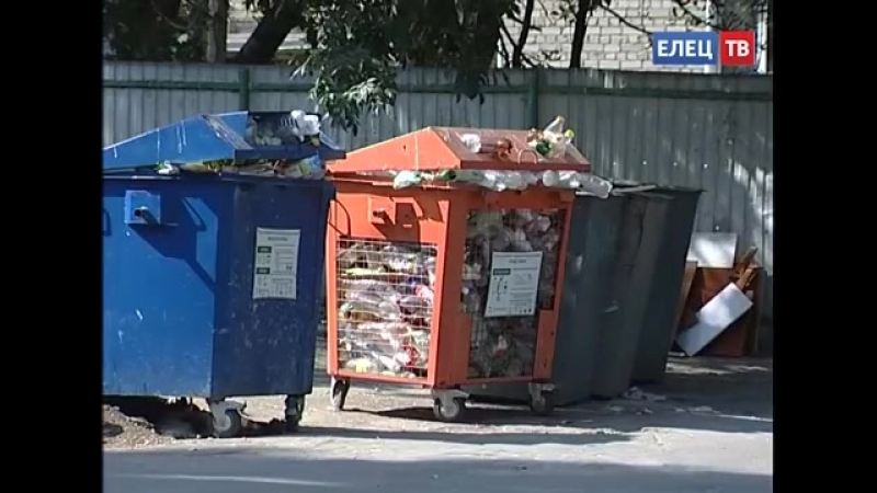 Внедрение раздельного сбора мусора в Ельце зашло в тупик