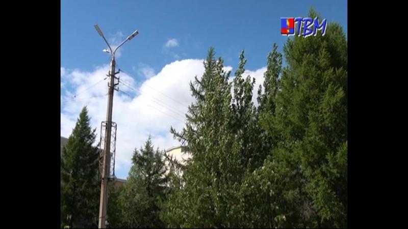 В Мончегорске приступают к санитарному прореживанию деревьев. Эти работы необходимо провести в местах расположения линий электро