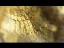 ЕЛОРДАСЫ АСТАНА ҚАЛАСЫНА - 20 ЖЫЛ!  Астананың 20 жылдығы логотипі шеңбер үлгісіндегі Самұрық құсының қанаттарын бейнелейді. Шең
