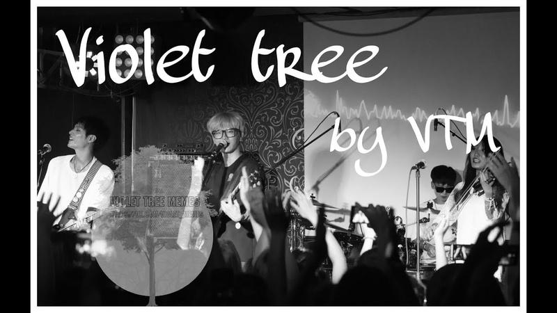 [VIOLET TREE] by VTM