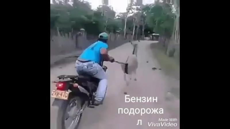 бензин кончился
