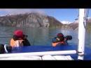 Каланы - морские бобры