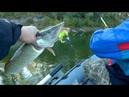 Рыбалка на джиг! Как щука рвала силикон