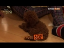 Jjong Doggies ♥
