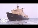 Арктика у родных берегов. Эфир 23.08.1977 г. (1977)