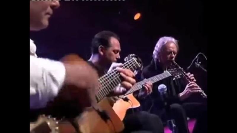Les Flots Du Danube. The Trio Rosenberg и Koen De Cauter.