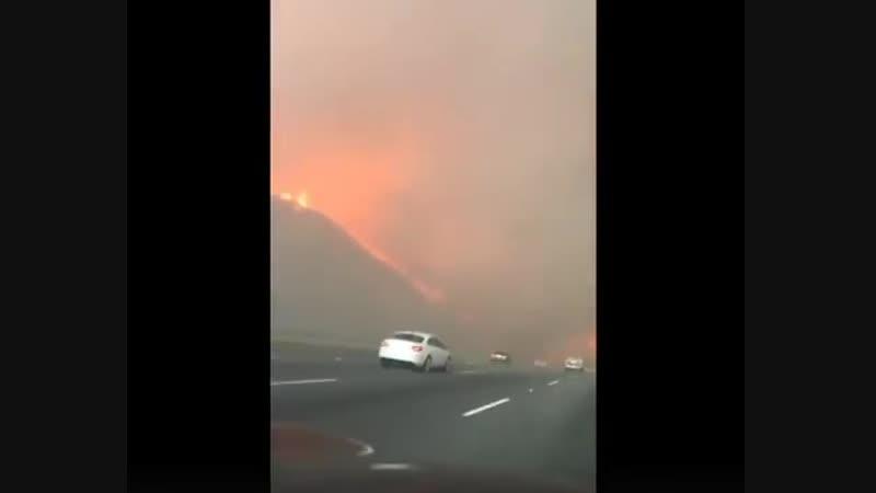 В Калифорнийском пожаре русскоязычные мама и дочка пытаются уехать...