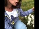 Мои откровения на острове Исландия 😜😂Красивое ,милое растение покорившее меня оказалось весьма с забавным и даже не приличным на
