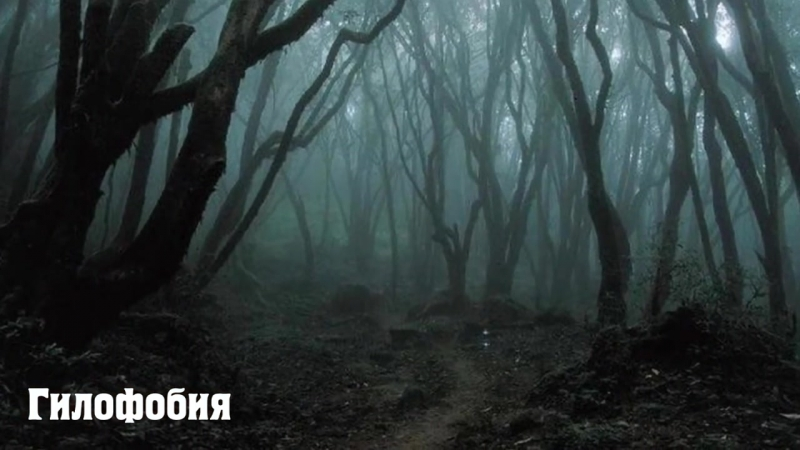 Самые странные страхи и фобии [Лучшие видео ADME]