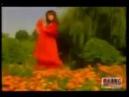 Muminova Sevinch- To'lin oy