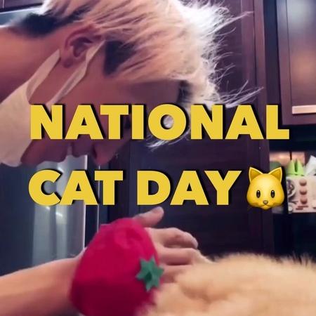 "COSMOPOLITAN KOREA 코스모폴리탄 on Instagram: ""오늘은 바로 냥데이🐱💕세계 고양이의 날입니다. 캣데이를 기념해 냥집사 스타들을 코스모 가 모아모아봤어요. GD, 송민호, 설리, 강다니엘, 산다라박, 김유정, 효린, 손담비, 서강준 그리..."