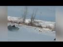 Сибирский Алладин