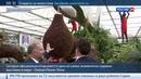 Новости на Россия 24 • В лондонском Челси все цветет и пахнет