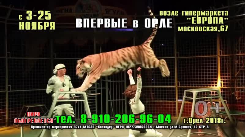 Московский цирк «Арена-ягуар» с программой «Полосатый рейс»