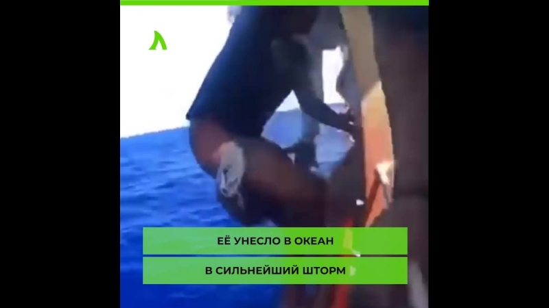 Подросток 49 дней дрейфовал в открытом море | АКУЛА